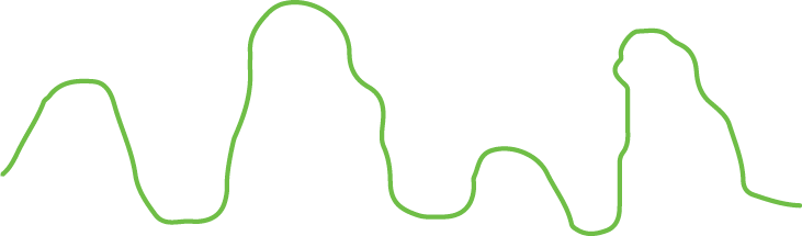 A wobbly bumpy line that goes up and down at various heights.