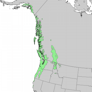 Natural distribution map for Tsuga heterophylla