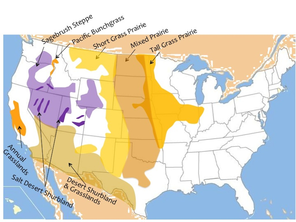 Map of the North American rangeland ecosystems of central and western U.S. and northern Mexico including deserts and xeric shrublands
