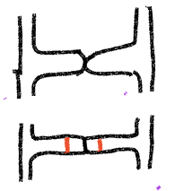 The two hyphae touch one to the other, a second drawing shows the divisions between the cells breaking down and new walls appearing in red