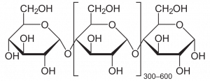 elemental structure of starch