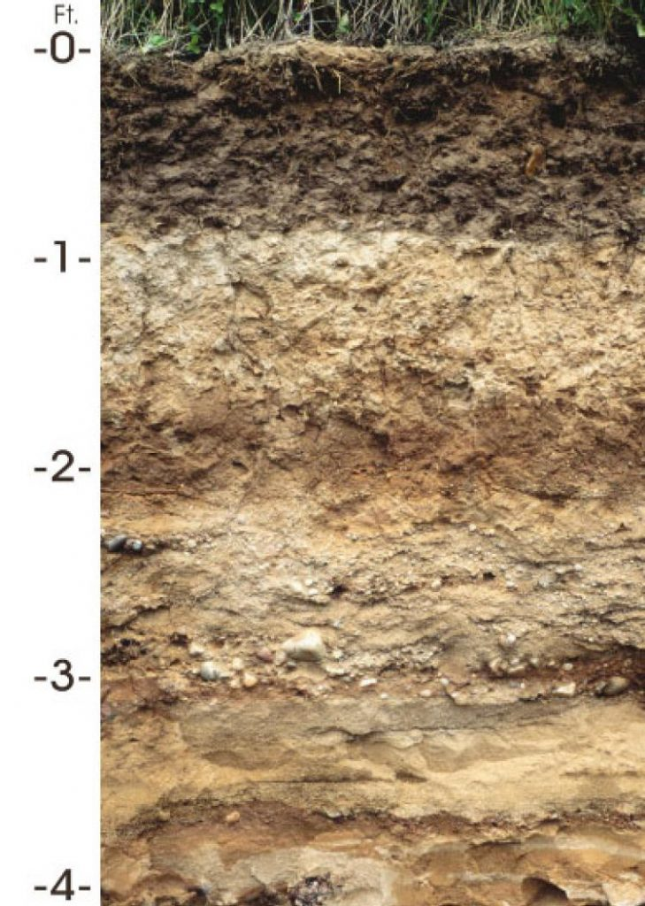 Antigo soil profile showing from 0 to 4 feet deep