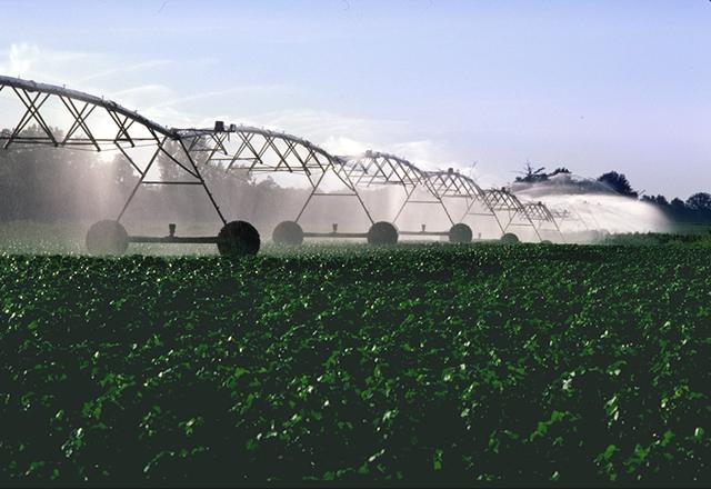 Pivot irrigation system on a cotton field