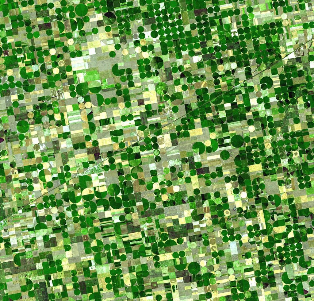 Satellite image of crops growing in Kansas, United States. Healthy, growing crops are green.
