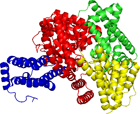 the Phosphoenolpyruvate (PEP) carboxylase single sub-unit structure (generated by PyMOL).