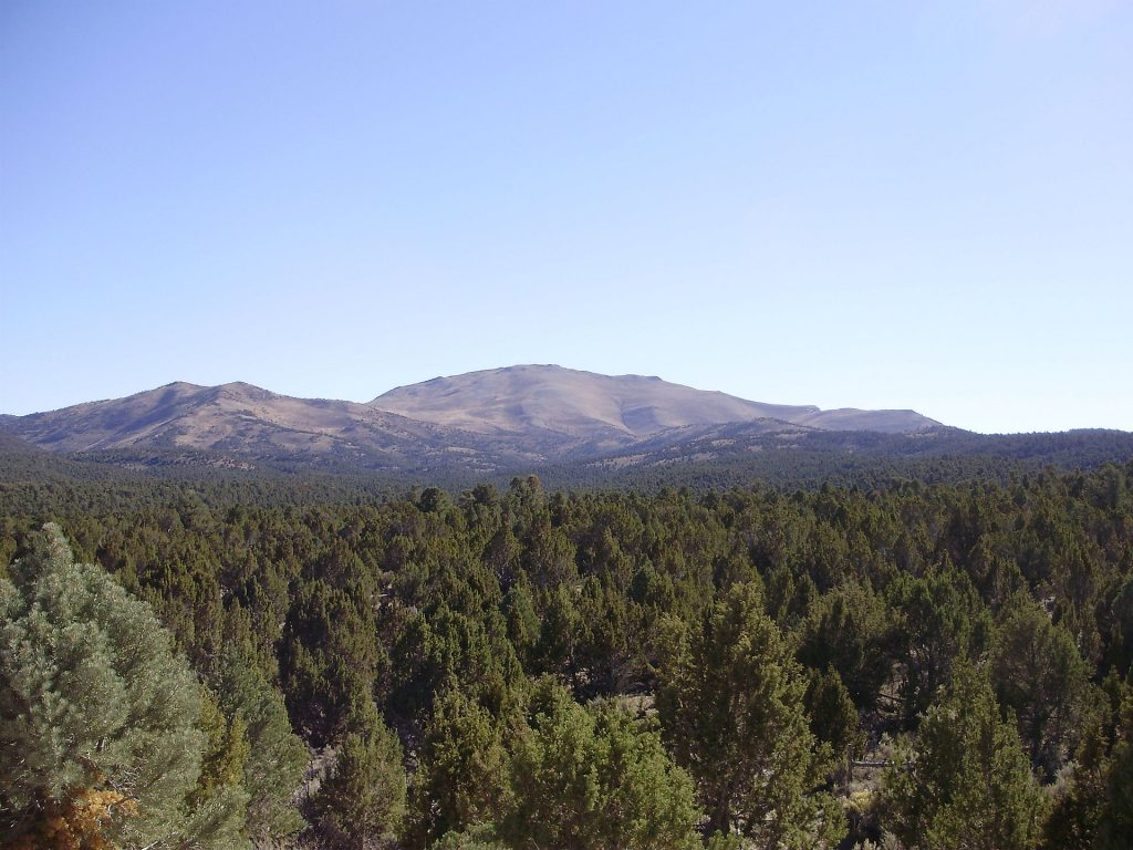 View south towards Big Bald Mountain from White Pine County Route 6 ascending Overland Pass from the east