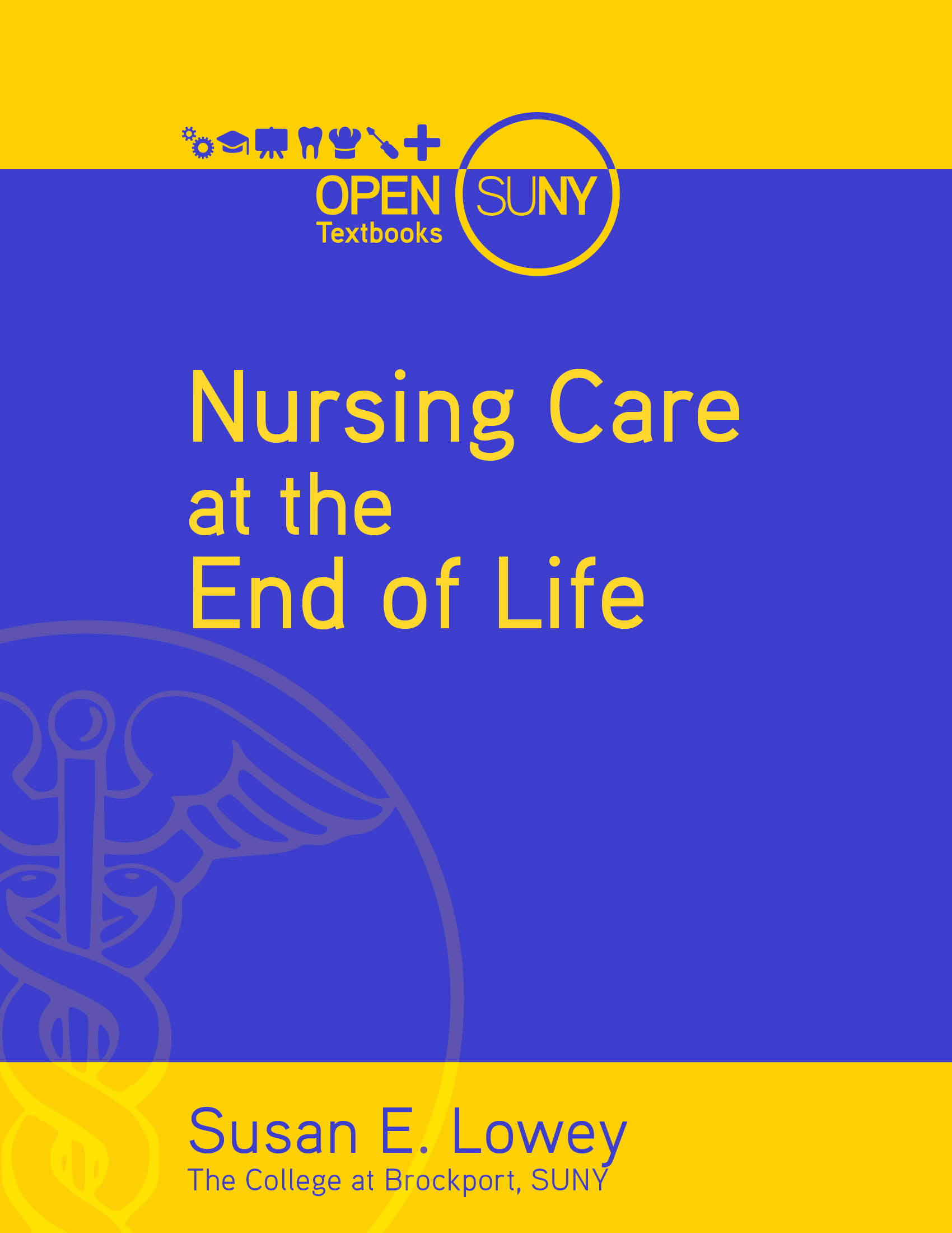 Cover image for Nursing Care at the End of Life