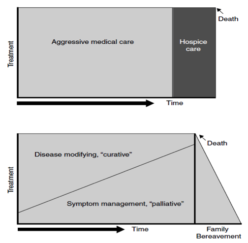 Figure 4.1 Models of Care (re-printed with permission from Lynn & Adamson, 2003 from RAND Corporation, Santa Monica CA).
